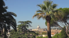 Aerial view Vatican dome church cathedral sunny day palm tree Rome landmark icon Stock Footage