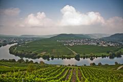 World famous sinuosity at the river mosel near trittenheim Stock Photos
