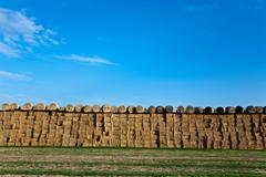 Bale of straw with blue sky Stock Photos