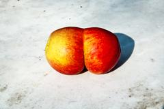 apples with interresting deformations give fantasy a chance - stock photo
