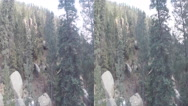 Stock Video Footage of 3d pikes peak forrest colorado