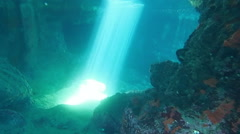 Underwater sunrays in a cave Stock Footage