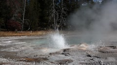Small geyser in Yellowstone National Park, Upper Geyser Basin, Wyoming Stock Footage