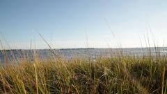 View of Barnegat Bay From Marsh Stock Video - stock footage