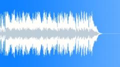 Stock Music of Celebrating Freedom 110bpm A
