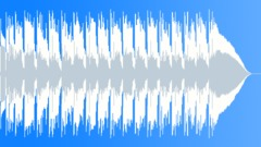 Easy Country Music 142bpm B - stock music