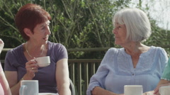 Group of senior female friends chatting in the garden with cups of tea - stock footage