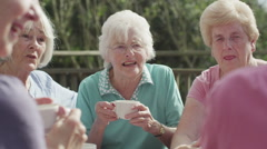 Group of senior friends chatting together in the garden with cups of tea Stock Footage