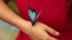 Tilt up from Colorful Butterfly to Beautiful Woman Stock Footage