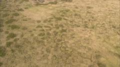 Open savannah terrain Stock Footage