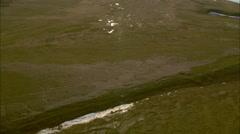 Aerial grassland shot Stock Footage