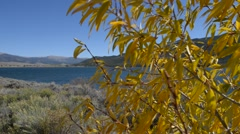 fall foliage with twin lakes in the background - stock footage