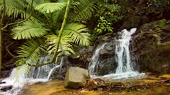 Natural waterfall in the rainforest in thailand Stock Footage