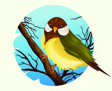 Bird Vector Piirros