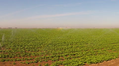 Farm Field With Irrigation Sprinklers Watering Crops Stock Footage