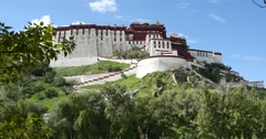 4k Potala with willow in Lhasa,Tibet. Stock Footage