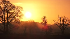 autumn sunrise english rural landscape with Oak trees on horizon timelapse - stock footage