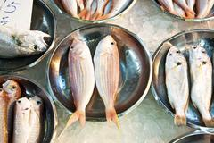 whole fresh fishes are offered in the fish market in asia - stock photo