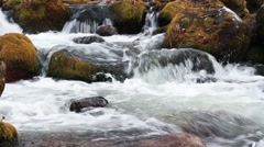 Forest river in the fall - stock footage