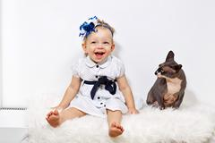 little girl and sphinx cat - stock photo