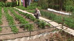 Boy pour potato beds in the garden Stock Footage