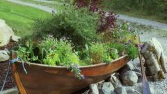 Canoe pot plant Stock Footage