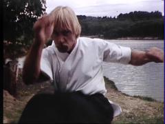 Martial Arts, Fighting Ninja Style Stock Footage
