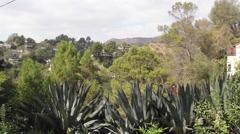 Hollywood Hills Beachwood Canyon Los Angeles, CA Stock Footage