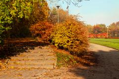 autumn season colorful trees in park with stairs - stock photo