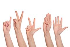 female hands counting from one to five - stock photo