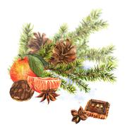 Christmas Watercolor Card with Sprig of Fir Trees Stock Illustration