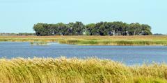 quivira national wildlife refuge - stock photo