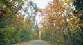 Trip on autumn road Footage