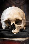 damaged human skull and old book - stock photo