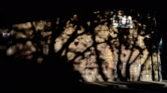 Shadow of trees moving along a brick wall Stock Footage
