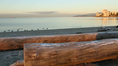 Ambleside Beach Winter Dawn, West Vancouver Stock Footage