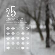 25 vector snowflakes Stock Illustration