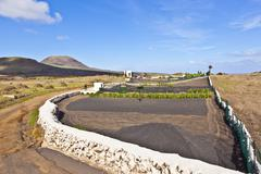 feld in lanzarote bei haria mit blauem himmel - stock photo
