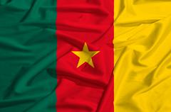 Cameroun flag on a silk drape waving - stock illustration