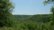 Stock Video Footage of Beautiful Cycling Seasons Time Lapse Forest Valley Mammoth Cave National Park