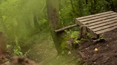 Fast mountain bikers riding Stock Footage
