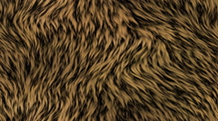 Fur generated seamless loop video Stock Footage