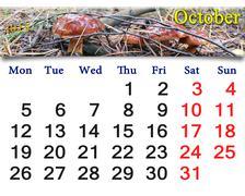 calendar for october of 2015 with boletus badius - stock illustration