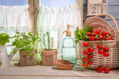 sunny kitchen full of vegetables and herbs - stock photo