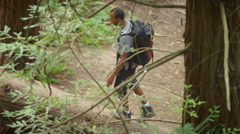 Young couple hiking balance and walk up a fallen tree Stock Footage
