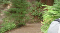 Hiking young man walks down forest path looking around Stock Footage