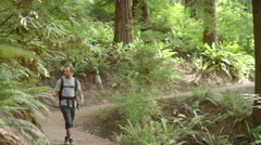 Wide shot of young man walking along hiking path Stock Footage