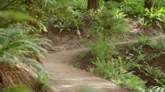 Wide shot of young woman walking along hiking path Stock Footage