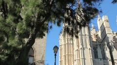 Cathedral - Palma de Mallorca - stock footage