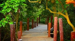 Tourist strolling along elevated wooden walkway in cambodia Stock Footage